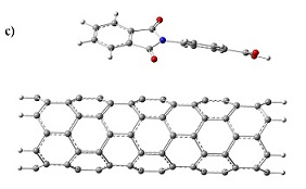 Non-Covalent Interactions of N-(4-CarboxyPhenyl)Phthalimide with CNTs