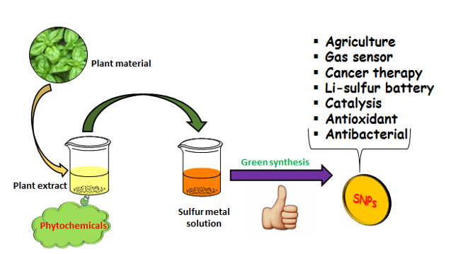A Review on Green Synthesis of Sulfur Nanoparticles via Plant Extract, Characterization and its Applications