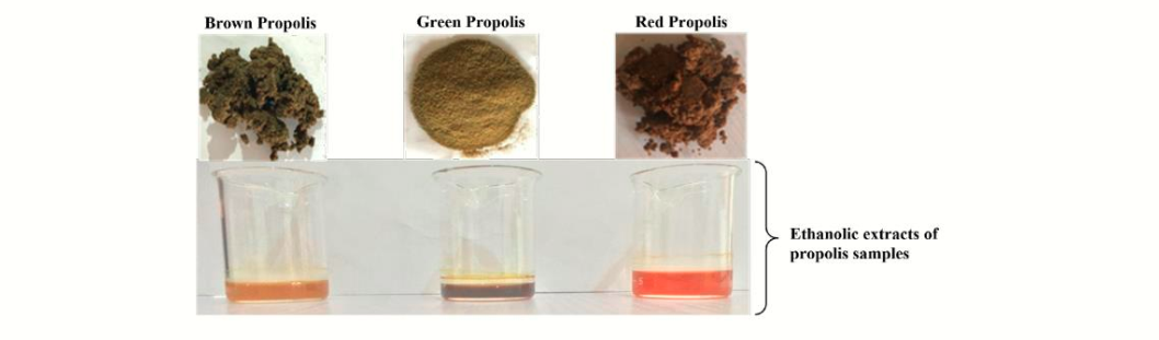 Comparative Phytochemical Analysis of Brown, Green and Red Propolis from Umudike, Abia State Nigeria