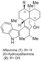 Aflavinines: History, Biology and Total Synthesis