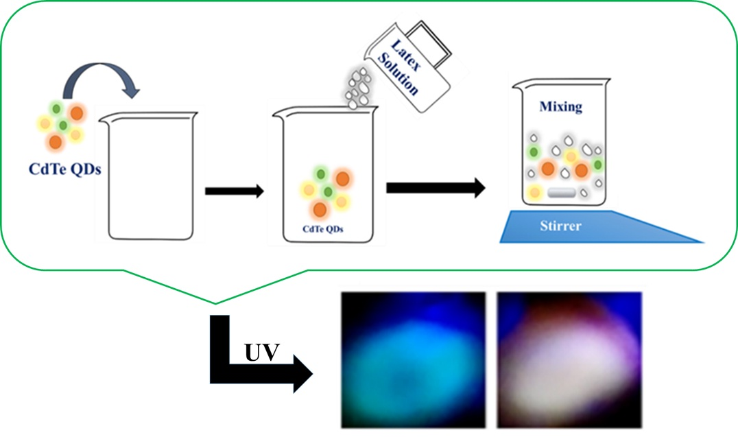 Synthesis of a fluorescent mechanochromic polymer based on TGA-capped CdTe Quantum Dots and liquid latex